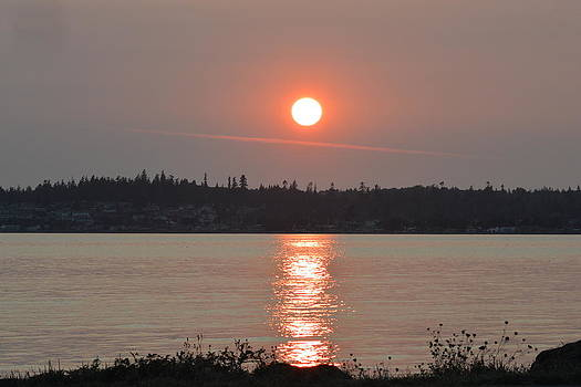 Nicki Bennett - Birch Bay Sunset