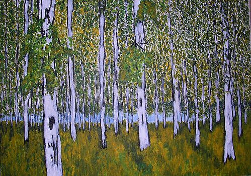 Birch Forest by Zeke Nord