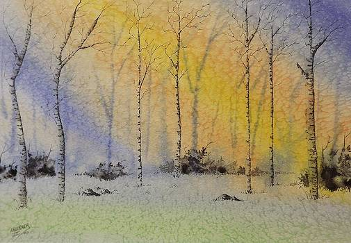 Birch in Blue by Richard Faulkner