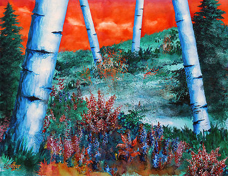 Birch Trees at Sunset by Curtiss Shaffer