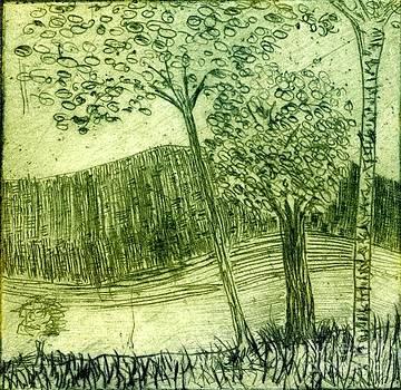 Birch Trees by Branko Jovanovic
