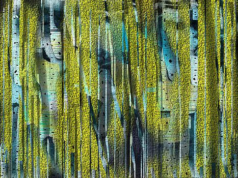 Birches by Yul Olaivar