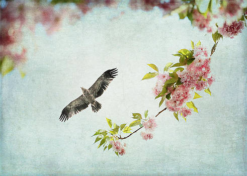 Bird and Pink and Green Flowering Branch on Blue by Brooke Ryan