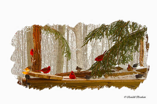 Randall Branham - BIRD MENAGERIE