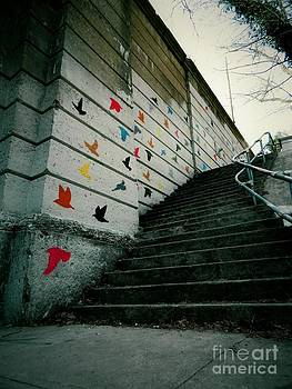 Bird Mural Stairway by K L Roberts