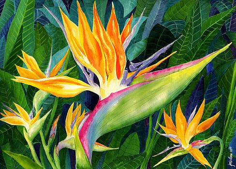 Bird-of-Paradise by Janis Grau