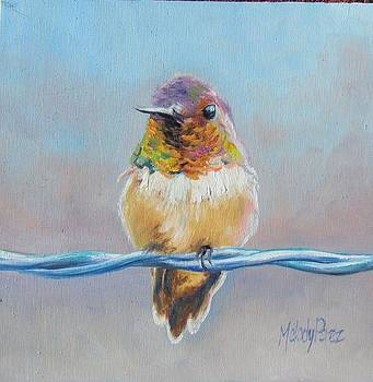 Bird on a Wire by Melody Perez