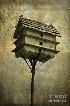 David Gordon - Birdhouse I
