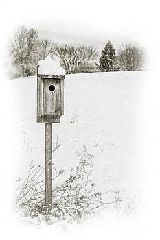 Randy Steele - Birdhouse in Snowy Field