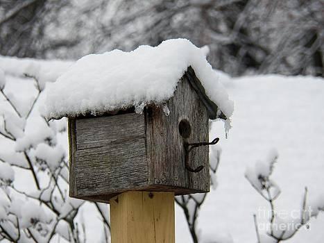 Judy Via-Wolff - Birdhouse NY