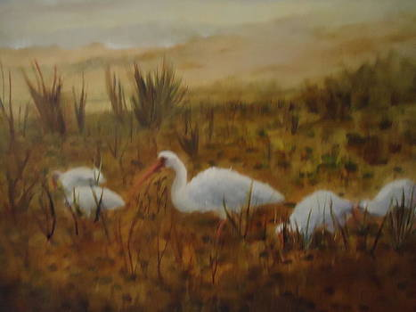 Birds in the Marshes by Betty Pimm