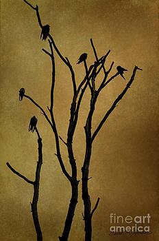David Gordon - Birds in Tree