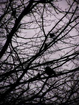 Birds in Winter Branches by Nancy Mitchell