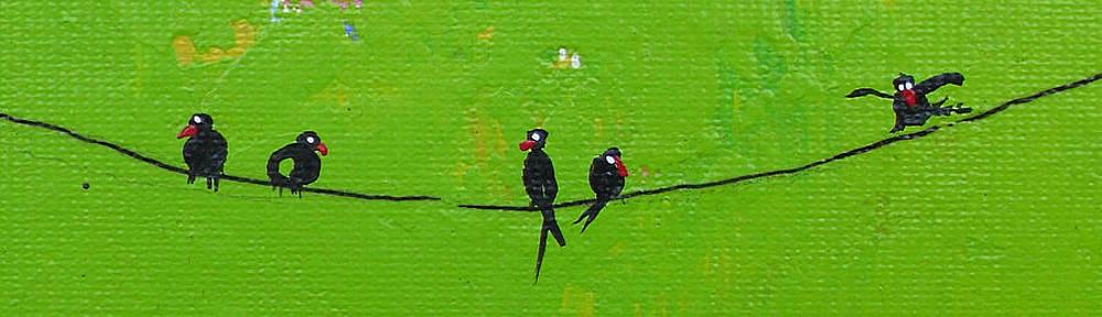Birds by Ivaylo Georgiev