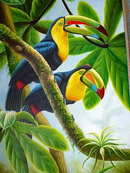 Birdwatching by Unknown