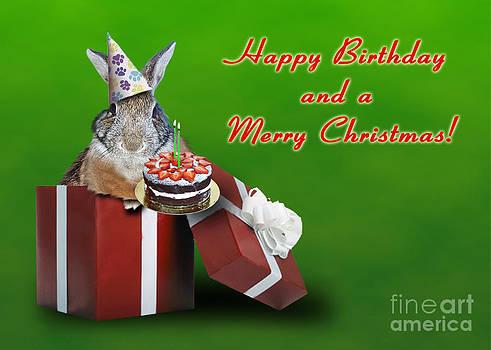 Jeanette K - Birthday and Christmas Bunny Rabbit