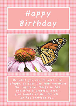 Michael Peychich - Birthday Card Monarch and Cone Flower