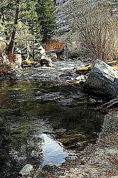 Bishop Creek by Lynn Bawden
