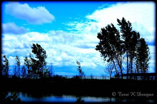 Black and blue by Terri K Designs