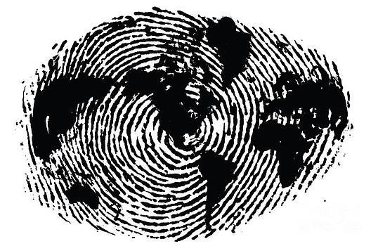 Sassan Filsoof - black and white ink print poster One of a Kind Global Fingerprint