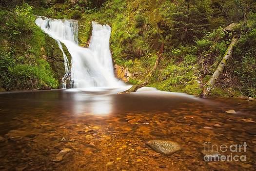 Black Forrest Waterfall by Maciej Markiewicz