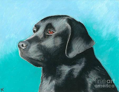 Black Labrador by Aaron Koster
