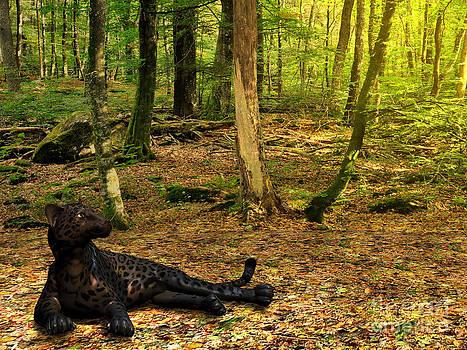 Corey Ford - Black Panther