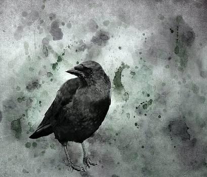 Gothicolors Donna Snyder - Brackish Black