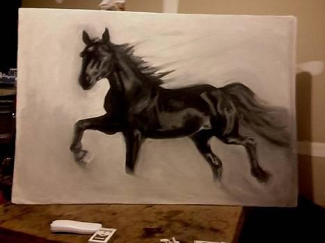 Black stallion by Genevieve Elizabeth
