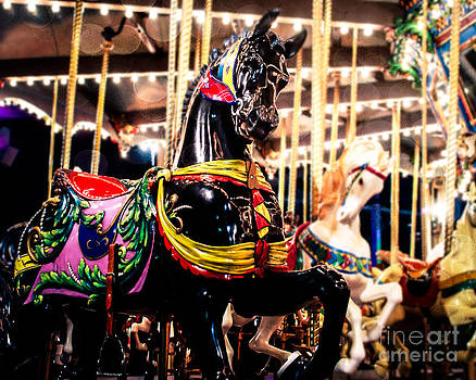 Sonja Quintero - Black Stallion on the Carousel