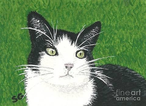 Black Tuxedo Cat in Green Grass by Sherry Goeben
