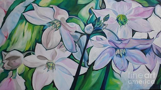 Blanca Flor by Elson Velazquez