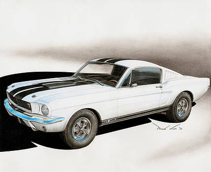 Blanco Shelby by Paul Kim