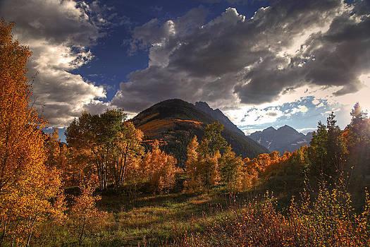 Blazing Meadow by Chris  Allington