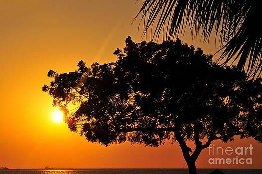 Blazing Red Sea Sunset by George Paris
