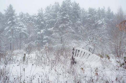 Jenny Rainbow - Blizzard in Late Autumn