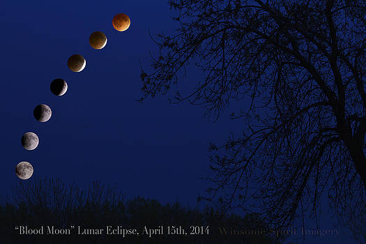 Blood Moon Lunar Eclipse by Kim Kruger