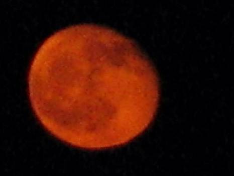 Blood Red Moon 2014 by Shawn Hughes