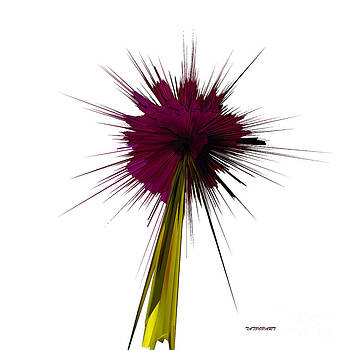 Bloom by Tatjana Popovska