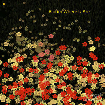 Bloom Where You are by Trilby Cole