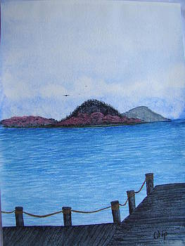 Bloomin Island by Chip Picott