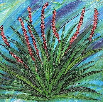 Marcia Weller-Wenbert - Blooming Coral