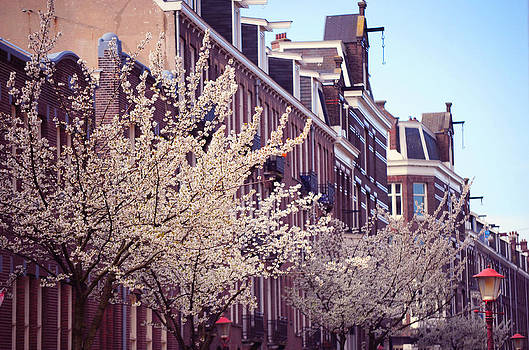 Jenny Rainbow - Blooming Decoration of the Streets. Pink Spring in Amsterdam