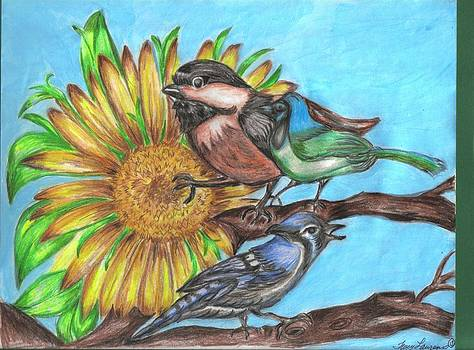 Blossom Birds by Tracy Lawrence