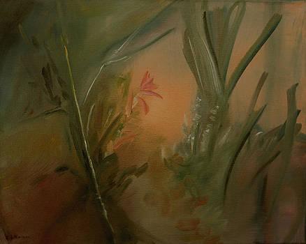 Blossom Moon  May by Ethel Vrana