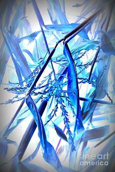 Blu Harvest by Alex Blaha