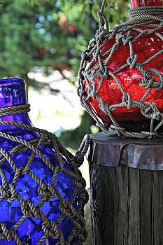 Blue and Red by Lynn Jordan