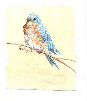 Blue bird by Callie Smith