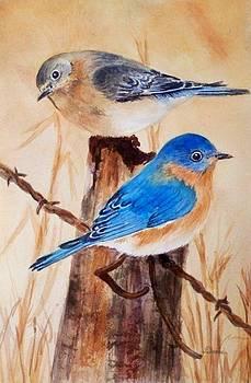 Blue Birds  by Deane Locke