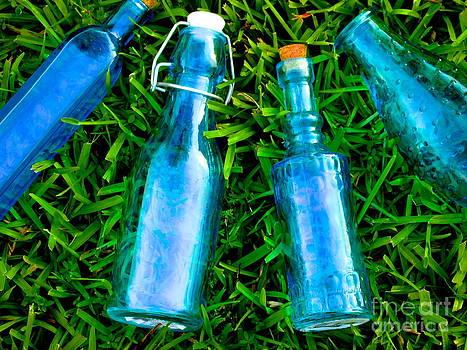 Blue Bottle Beauty by Dana Doyle